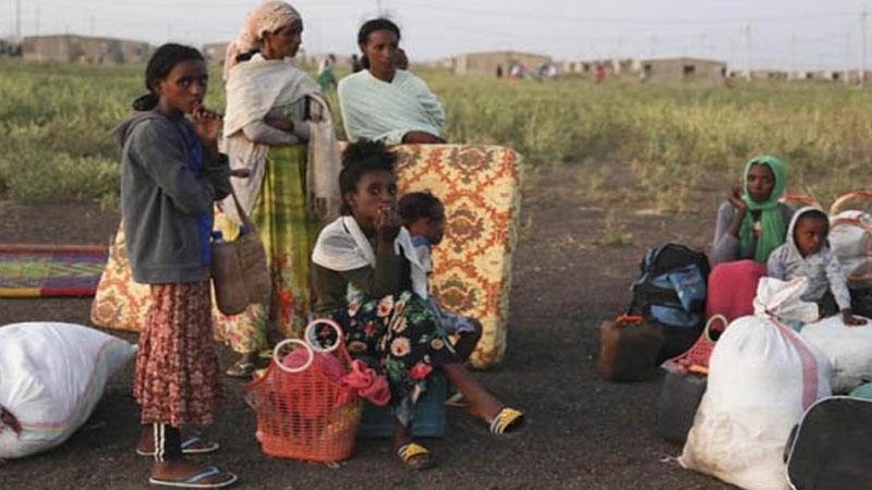 Over 40,000 Ethiopians have fled to Sudan: UN