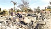 Firefighters battle blazes, 50 dead