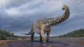 New dinosaur species found is largest in Australia: Scientists