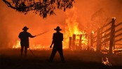 Bushfire threat still high as Australia clean up begins