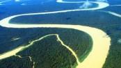 Amazon rainforest on verge of collapse