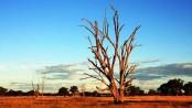 Australia suffers hottest summer on record