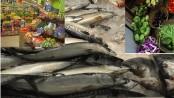 Bangladesh to face 23pc food production loss for environmental reasons
