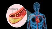 Lead, mercury in blood raises cholesterol levels, says study