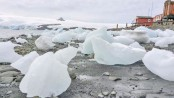 Climate change shows in Antarctic snows