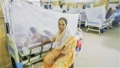 Dengue: 1 more dies, 184 patients hospitalized