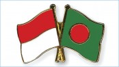 Dhaka likely to urge Jakarta for joint venture in power sector