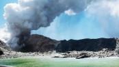 Five dead after NZ volcano eruption