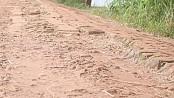 Munshiganj people suffering  due to dilapidated road