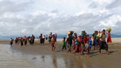 New arrivals of Rohingyas now stand at 647,000: IOM