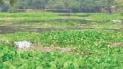 Poor drainage turns playground into marshland