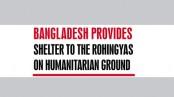 Rohingya a big burden for Bangladesh, says PM