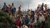 Myanmar govt issues amnesty to 62 Rohingya returnees