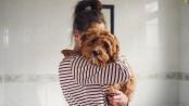 Spain grants joint custody of dog in rare ruling