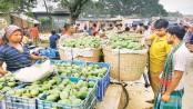 Bumper mango production likely to fetch good profits
