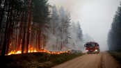 European heatwave brings drought, wildfires