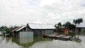 Flood condition worsens in Sherpur as Brahmaputra swells
