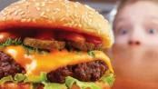 Junk food consumption may harm spatial memory: Study