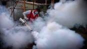 DNCC anti-mosquito drive: 100 establishments fined