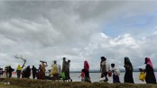 Came from India, '1,300 Rohingyas now in Cox's Bazar transit point'