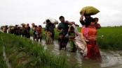 Rohingya repatriation: Bangladesh, Myanmar, China tripartite talks Tuesday